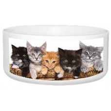 White Printable Dye Sublimation Cat Bowl for Personalising Pet Bowls.